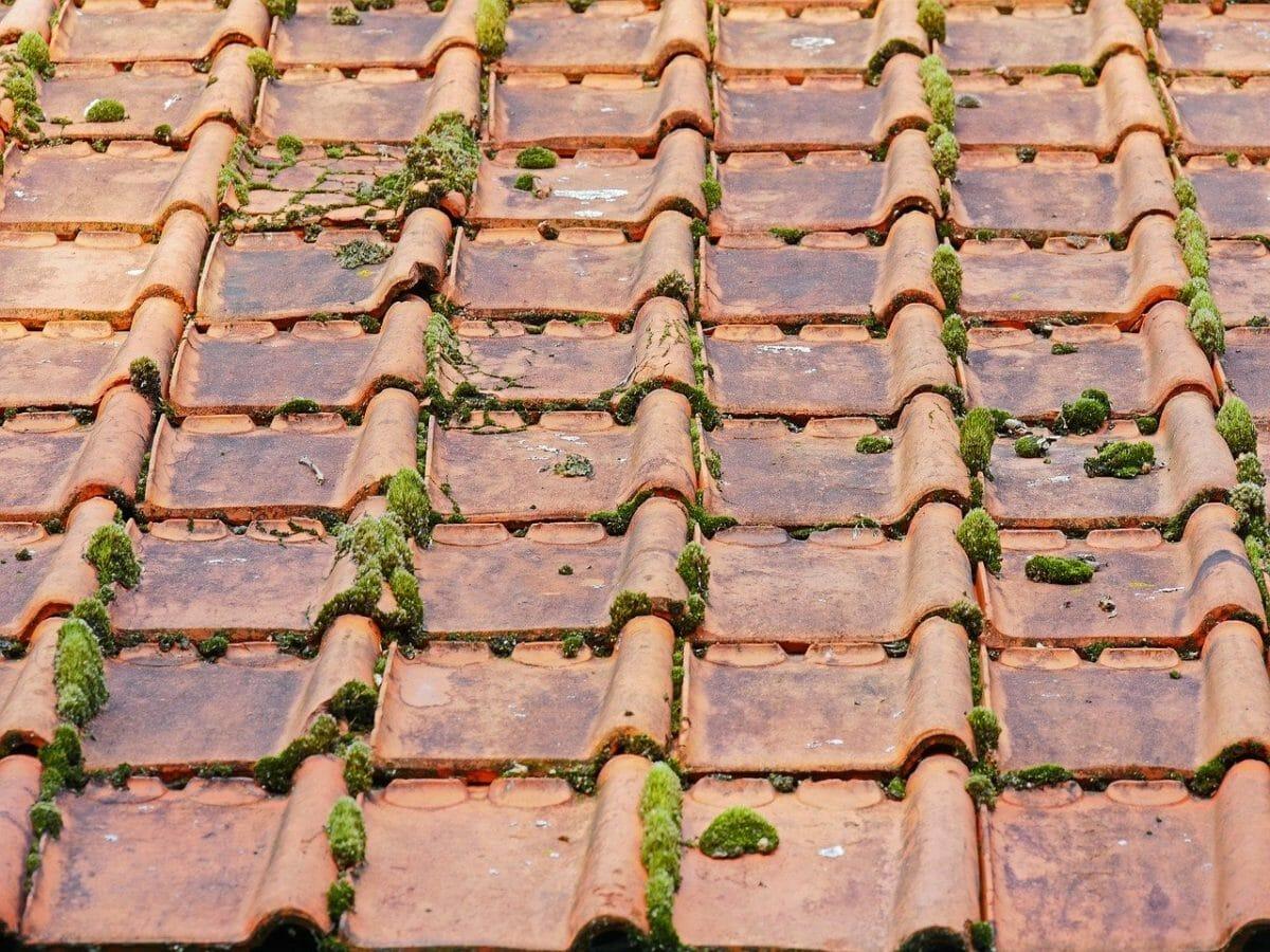 nokvorst reparatie, nokvorst renovatie in 5044 Tilburg